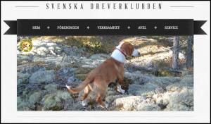 SvenskaDreverklubbenLink